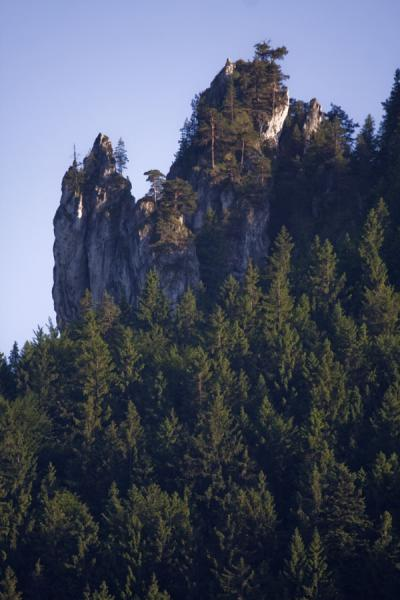Picture of Vrátna valley (Slovakia): Rocky cliffs near the entrance of Vrátna Valley at Tiesňavy gorge