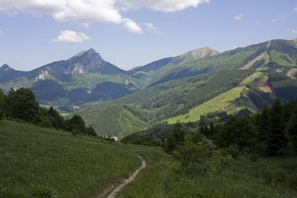 Picture of Entering Vrátna Valley from the west following one of the many trails