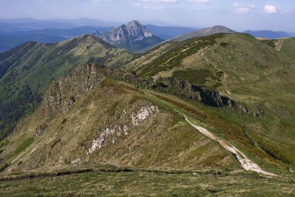 Trail following the ridge south of Vrtna Valley | Vrtna valley | Slovakia