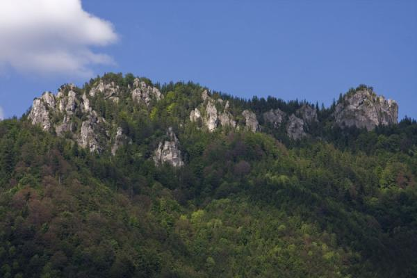 Picture of Vrátna valley (Slovakia): Rocky mountain range surrounding Vrátna Valley