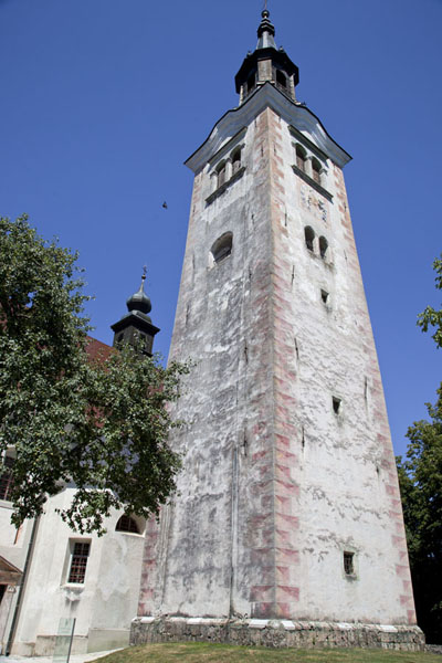 Picture of Looking up the belfry of the Church of the Assumption on Bled Island