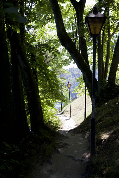 Trail running around Bled Island with lanterns | Lake Bled | Slovenia