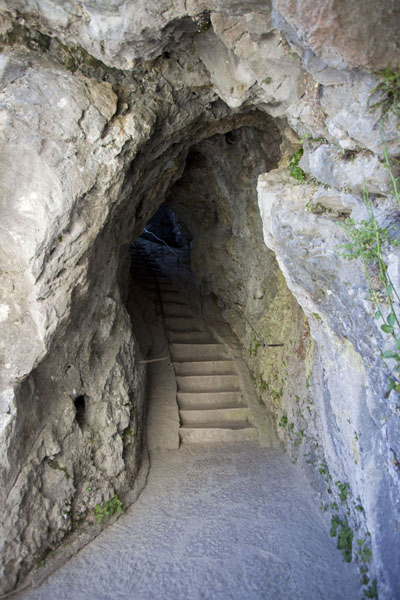 Picture of Predjama Castle (Slovenia): Stairway cut through the cave at Predjama Castle