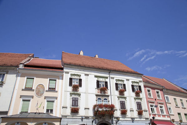 Row of houses of the old town of Ptuj | Ptuj | Slovenia