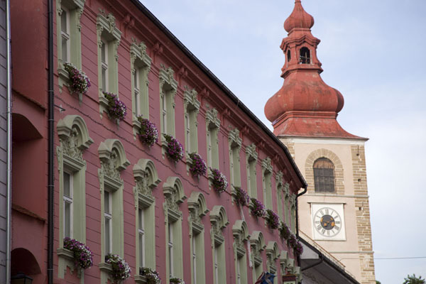 Pink building with the City Tower in the background | Ptuj | Slovenia