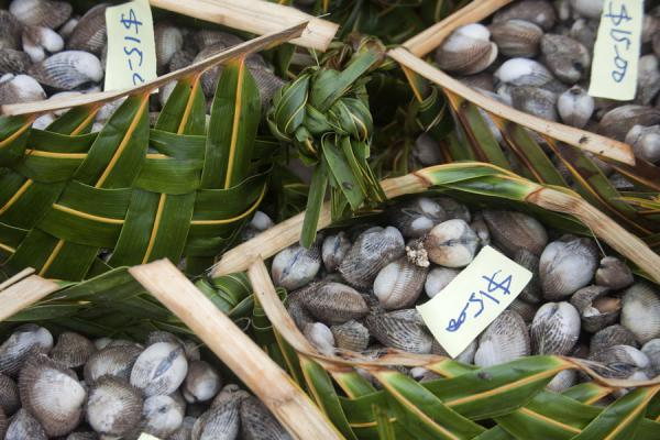 Palm-tree leaves as baskets for shells | Mercato di Gizo | Isole Salomone