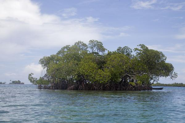 One of the many artificial islets in Langa Langa lagoon | Langa Langa Lagoon | 所罗门群岛