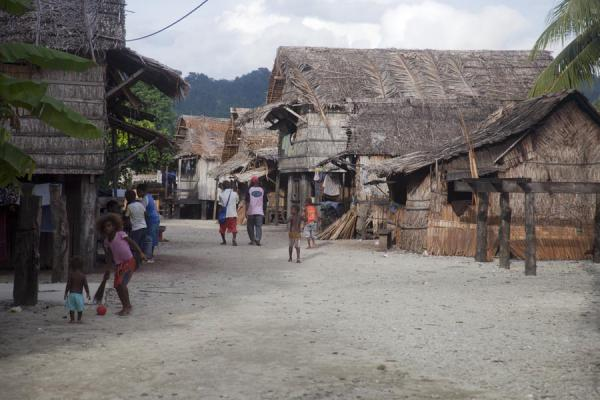 Main street of Lilisiana lined by traditional houses | Lilisiana | Solomon Islands