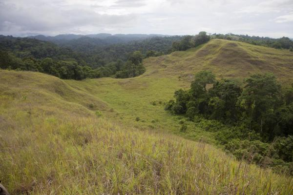 Foto di Landscape with hills in the hinterland of Honiara; Mataniko falls can be found in the forestLelei - Isole Salomone