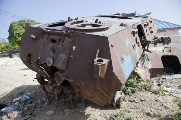 Picture of Rusting armoured personnel carriers lying on top of another