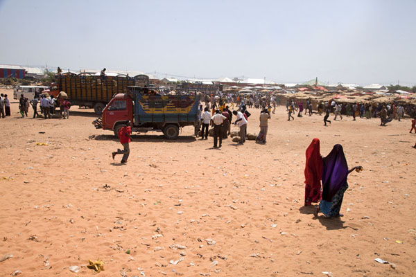 Trucks with qat on the left, the qat market on the right | Mogadishu qat market | Somalia