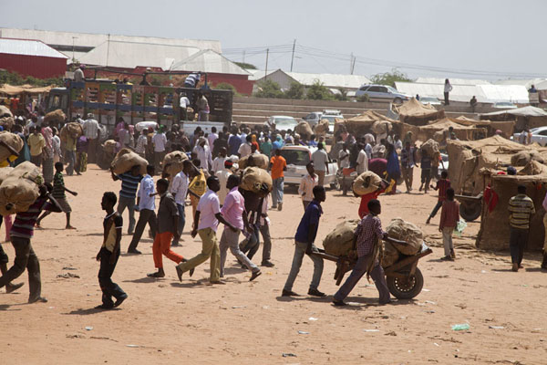 Foto van People running from the trucks to the market carrying heavy loads of qatMogadishu - Somalië