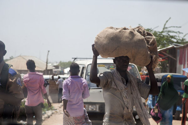 Man with heavy load of qat on his head | Mogadishu qat market | 索马利亚