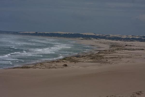 Foto de Beach and sand dunes at De Hoop ReserveReserva natural De Hoop - Africa del Sur