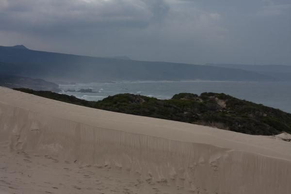 Foto de View towards the east from Koppie AlleenReserva natural De Hoop - Africa del Sur