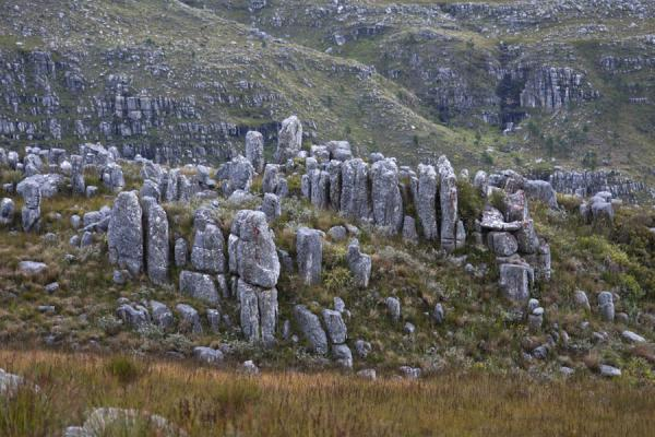 Picture of Vertical rock formations on a hill in Hottentots Holland reserve