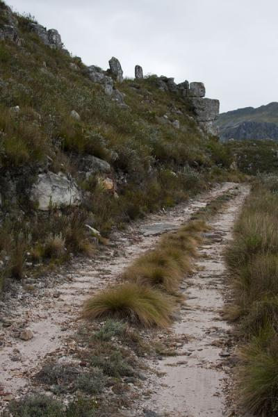Dirt track in the Hottentots Holland nature reserve | Hottentots Holland Nature Reserve | South Africa