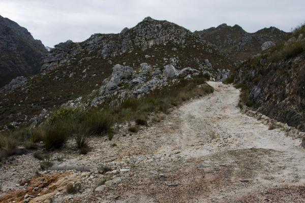 Typical view of Hottentots Holland reserve: mountains, rocks, and fynbos | Hottentots Holland Nature Reserve | South Africa