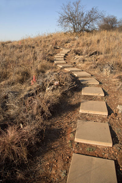 Steps leading through the landscape surrounding Sterkfontein | Sterkfontein Caves | South Africa