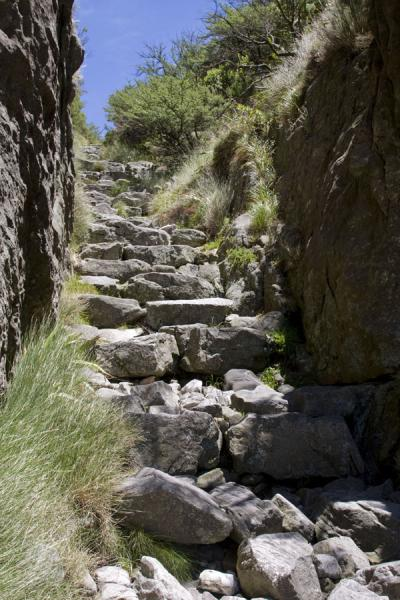 Picture of Table Mountain (South Africa): Trail leading up Table Mountain through Platteklip Gorge