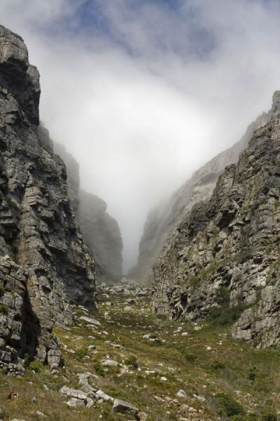 Picture of Table Mountain (South Africa): Cloud in Platteklip Gorge