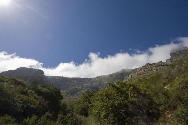 Picture of Top of Table Mountain with cloud