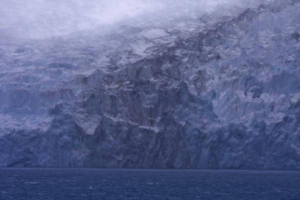 Blue and white wall of ice at Risting Glacier at the end of Drygalski Fjord - 南乔治牙和南三明治群岛