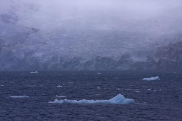 Icebergs floating in Drygalski Fjord with Risting Glacier in the background | Drygalski Fjord | South Georgia and South Sandwich Islands
