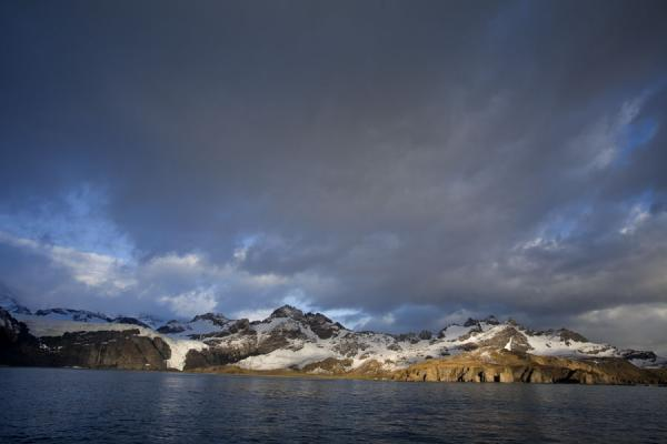 Photo de Early morning light on Gold Harbour - Géorgie du Sud-et-les îles Sandwich du Sud - Antarctique
