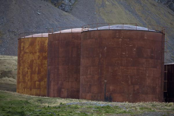 Old tanks are part of the whaling station of Grytviken | Grytviken | Géorgie du Sud-et-les îles Sandwich du Sud