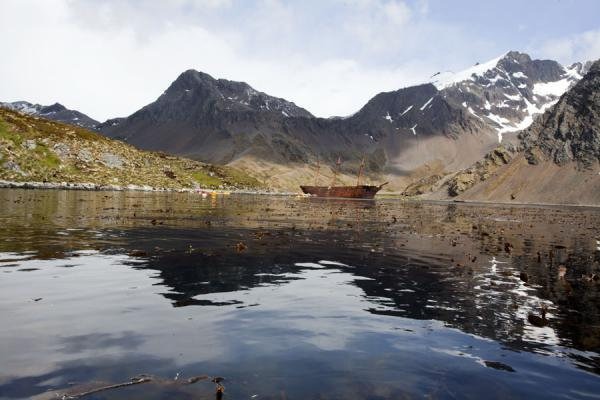 Picture of Ocean Harbour (South Georgia and South Sandwich Islands): The tranquil waters of Ocean Harbour reflecting mountain and wreck of Bayard