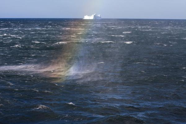Foto van Rainbow in the spray blowing off the waves with icebergSaint Andrews Bay - Zuid Georgia en de Zuidelijke Sandwicheilanden