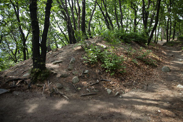 Small mound, part of the Hoamsanseong fortress on Hoam Mountain | Montagna Gwanak | Corea del Sud