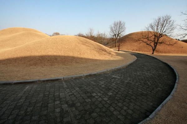 Foto di Corea del Sud (Tumuli and path in the Tumuli Park)