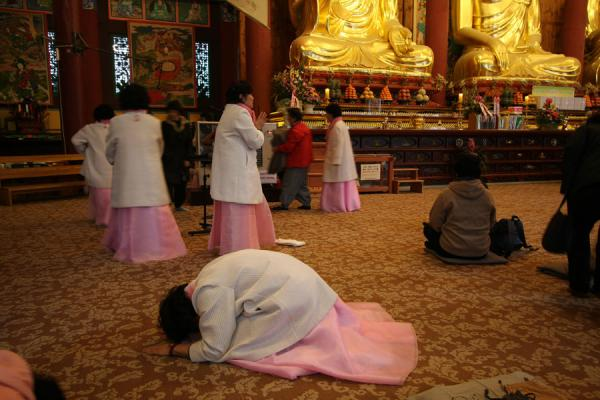Picture of Jogyesa Temple (South Korea): Pink dressed Buddhist nuns in prayer inside Jogyesa temple