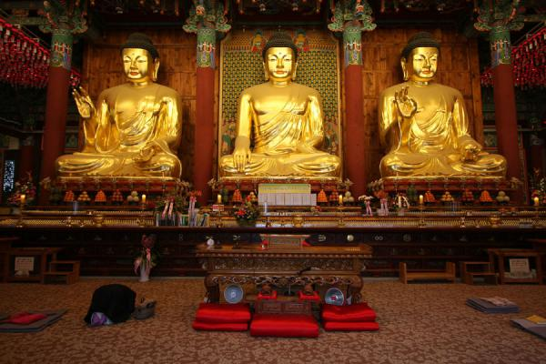 buddhist single women in cape vincent New jersey nj: retreats, retreat and conference centers, camp facilities for rent for couple and group retreats, catholic, yoga and meditation events.
