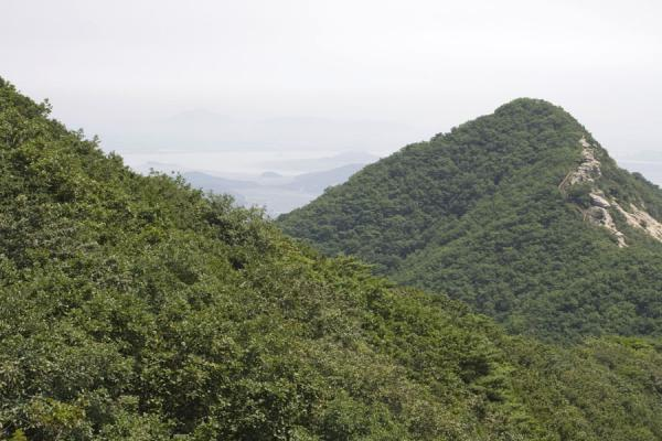 Picture of Manisan mountain (South Korea): Mountain ridge of Manisan is covered by trees