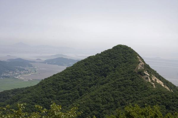 Picture of Manisan mountain (South Korea): Tree-covered hill, part of the Manisan ridge