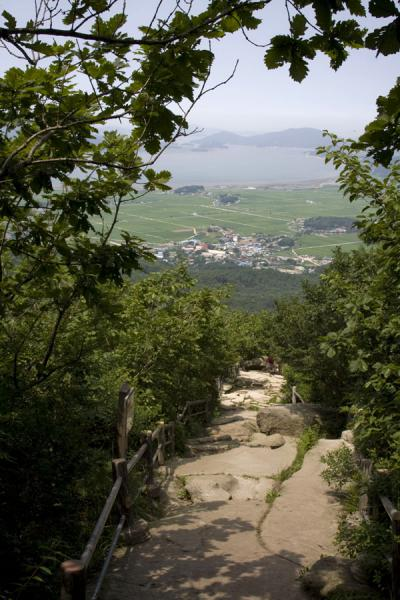 Picture of Manisan mountain (South Korea): Path leading up Manisan