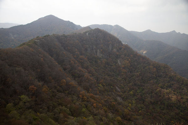 Landscape of Naejangsan National Park with autumn-colour tree cover | Naejangsan Mountain | 南韩
