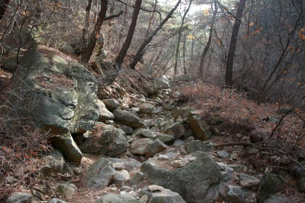 Picture of Namsan (South Korea): Rocky path leading up Namsan mountain