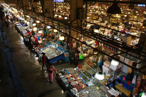 Picture of Noryangjin Fish Market (South Korea): Noryangjin fish market seen from above