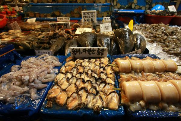 Picture of Noryangjin Fish Market (South Korea): Seafood on display at one of the hundreds of stalls at Noryangjin fish market