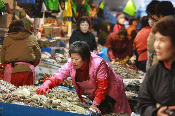 Picture of Noryangjin Fish Market (South Korea): Business going on at the Noryangjin fish market
