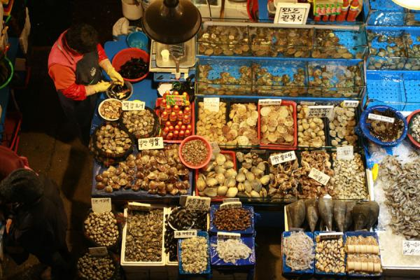 Picture of Noryangjin Fish Market (South Korea): View from above of a stall in Noryangjin fish market