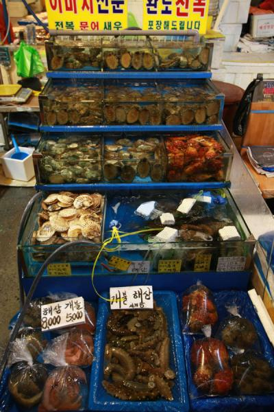 Picture of Noryangjin Fish Market (South Korea): Typical stall with a choice of sea creatures for consumption