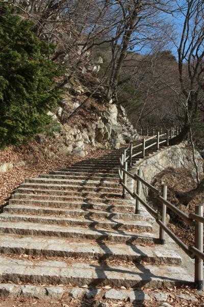 Picture of Seokguram Grotto (South Korea): Part of the climb to Seokguram Grotto