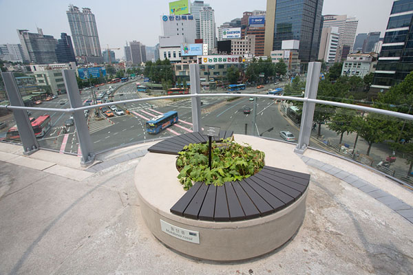 Flower pot and bench with the city of Seoul in the background | Seoullo 7017 | Zuid Korea