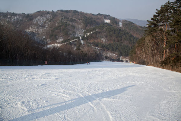 Looking down the lower part of the Gold Fantastic run | Yongpyong skiing | South Korea