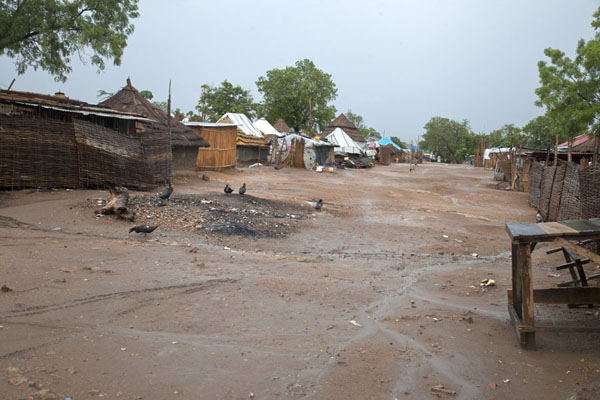 Picture of Street with huts in the university area in JubaJuba - South Sudan